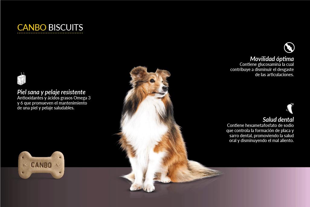 Descripción Canbo galletas para perro snack